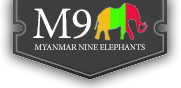 Myanmar Nine Elephants